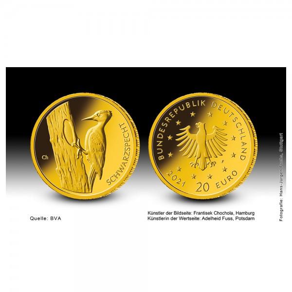 """Goldeuro 2021 Heimische Vögel (Schwarzspecht) """"J"""" Goldmünze 1/8 Unze (oz)"""