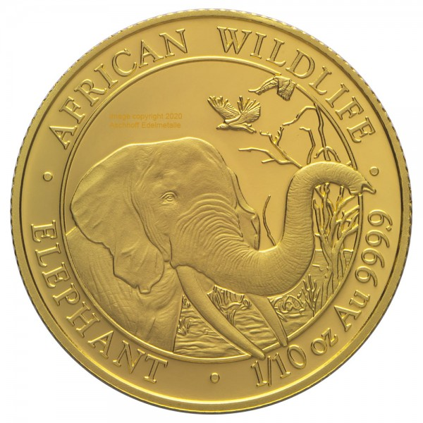 Somalia Elephant 2018, Goldmünze 1/10 Unze (oz)