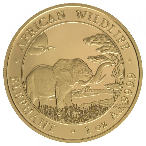 Somalia Elephant 2019, Goldmünze 1 Unze (oz)